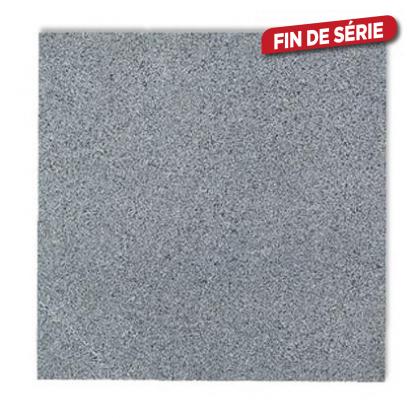 Dalle en granit 15 x 15 x 2 cm - Mr.Bricolage