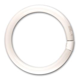 Tube fluo G10Q T9 Circline SYLVANIA