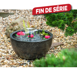 Fontaine pour bassin Mini Bassin