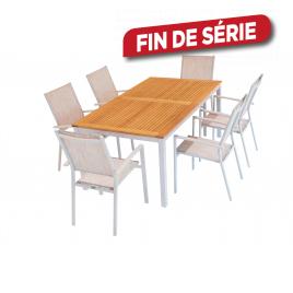 Ensemble IRIS