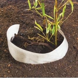 Feutre renforcé pour plantation et contrôle des bambous 0,75 x 3 m NORTENE
