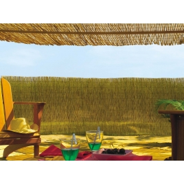 Paillon naturel 1 x 5 m REEDCANE