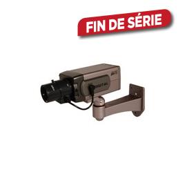 Caméra factice PRO pour intérieure LED CHACON