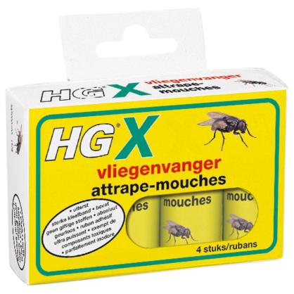 Attrape-mouche HG