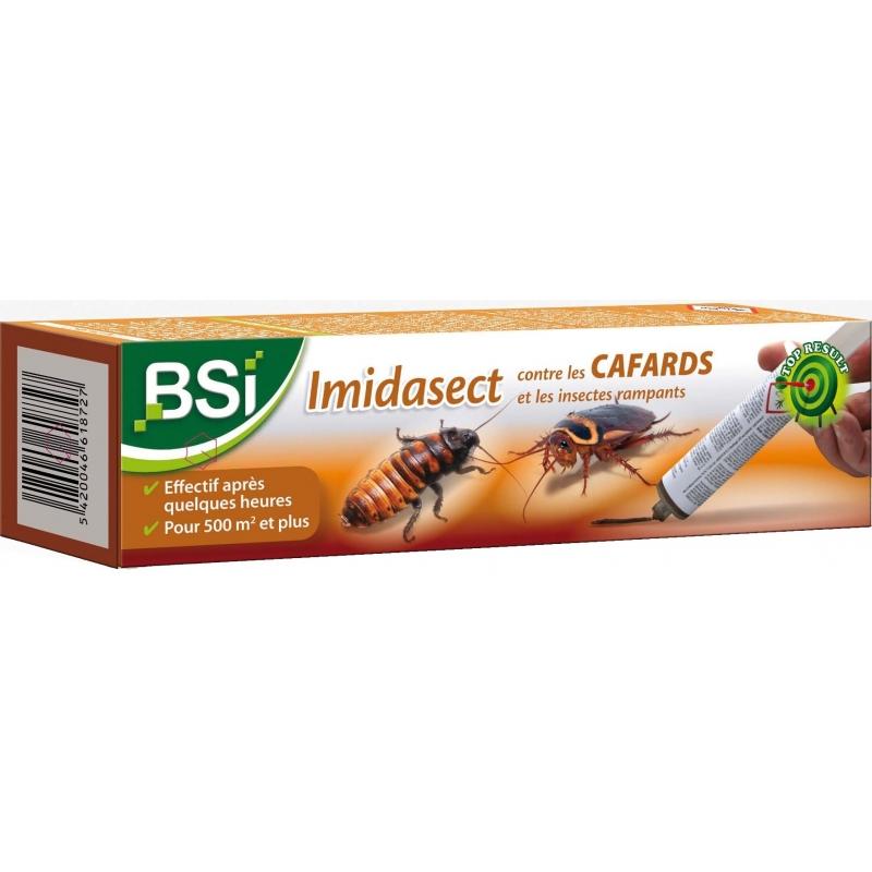 insecticide contre les cafards et les insectes rampants bsi. Black Bedroom Furniture Sets. Home Design Ideas