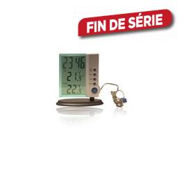 Thermomètre avec horloge transparent