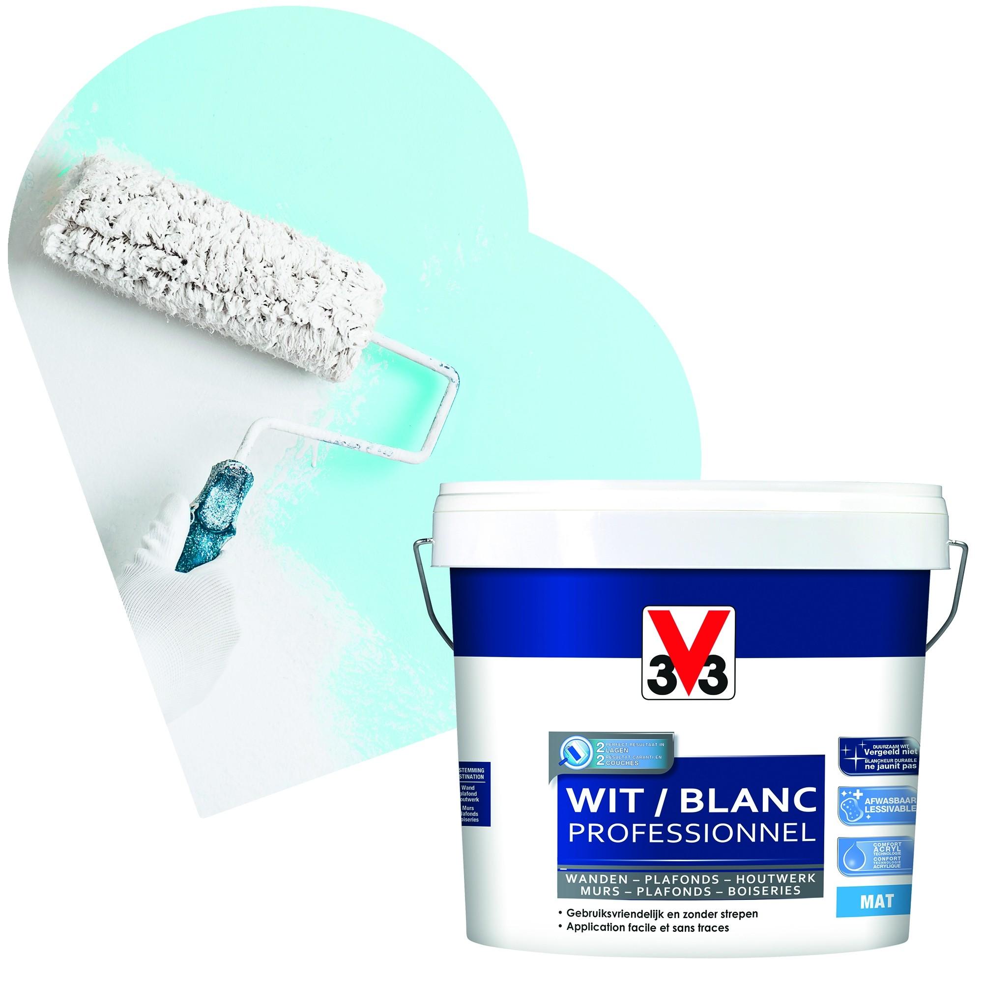 Peinture Blanche Professionnel Blanc Mat