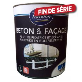 Peinture Façade & Béton Blanc THEODORE INSPIRATION