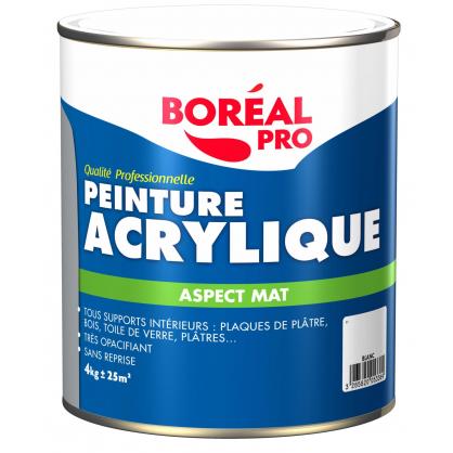Peinture acrylique boreal - Protection peinture murale ...