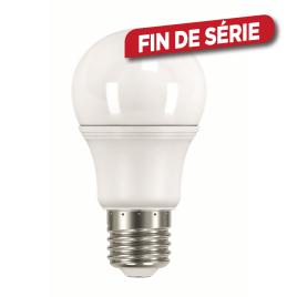 Ampoule LED sphère E27 6 W 4 pièces SELECT PLUS