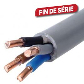 Câble XVB-F2 4G6 mm² au mètre