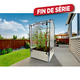 Mini-serre Tom Nursy 100 x 160 x 100 cm NORTENE