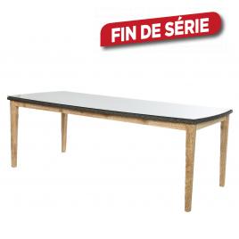 Table de jardin Marseille 200 x 100 x 76 cm