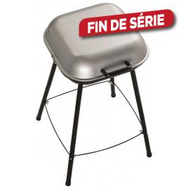 Barbecue charbon PicNic