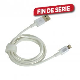 Câble de charge Lightning 1 m