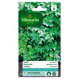 Semences de persil VILMORIN - Commun