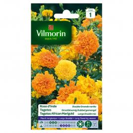 Semences de rose d'Inde VILMORIN