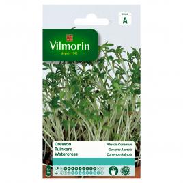 Semences de cresson VILMORIN - Alénois Commun - 1 g