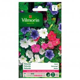 Semences de pétunia VILMORIN