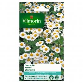 Semences de camomille VILMORIN