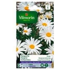 Semences de chrysanthème VILMORIN