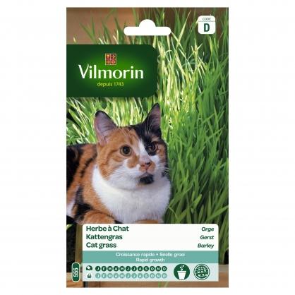 Semences d'herbe à chat VILMORIN