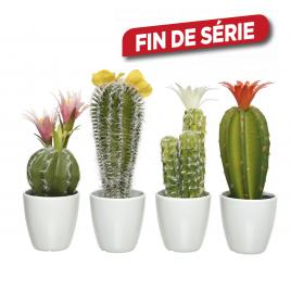 Cactus en plastique en pot