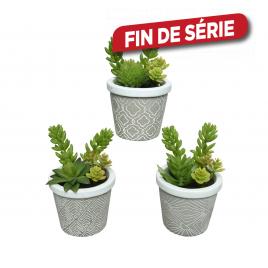 Plante en plastique en pot