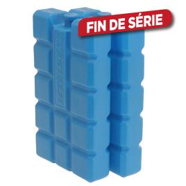 Bloc réfrigérant 16 x 9 cm 2 pièces