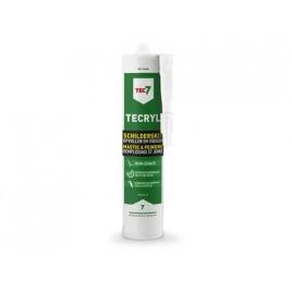 Mastic à peindre Tecryl 310 ml TEC7