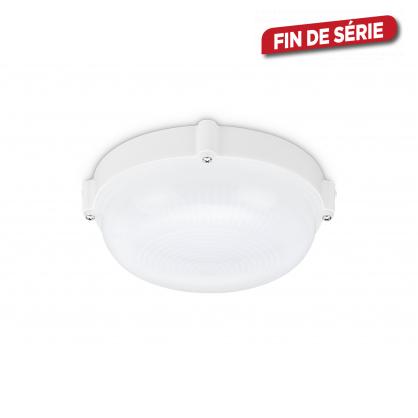 Hublot blanc LED 10 W PROLIGHT