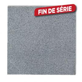 Dalle en granit 30 x 30 x 2 cm