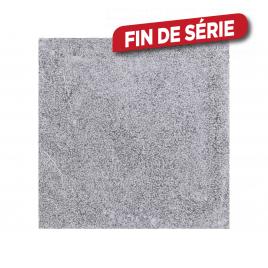 Dalle de terrasse bouchardée Bluestone 30 x 30 x 2,5 cm COBO GARDEN