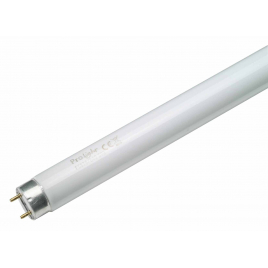 Tube néon T8 58 W 150 cm PROLIGHT