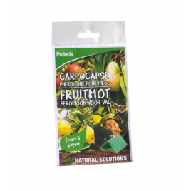 Recharge pour kit de piégeage des carpocapses des fruits à pépins