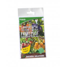 Recharge pour kit de piégeage des carpocapses des fruits à noyaux