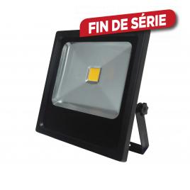 Projecteur LED Compact 30 W PROFILE