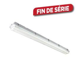 Tube fluorescent LED 120 cm 36 W