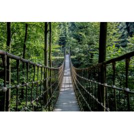 Toile Pont Suspendu 97 x 65 cm