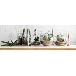 Toile Cactus 97 x 30 cm