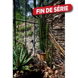 Impression mate encadrée Verrière et Cactus 80 x 120 cm