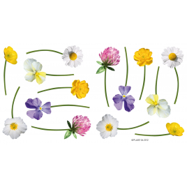 Planche de stickers Fleurs des champs 2 pièces