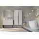 Meuble sous-lavabo Delta Erebor avec 2 tiroirs 100 cm Blanc mat ALLIBERT