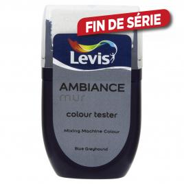 Testeur peinture murale Ambiance blue greyhound 30 ml LEVIS