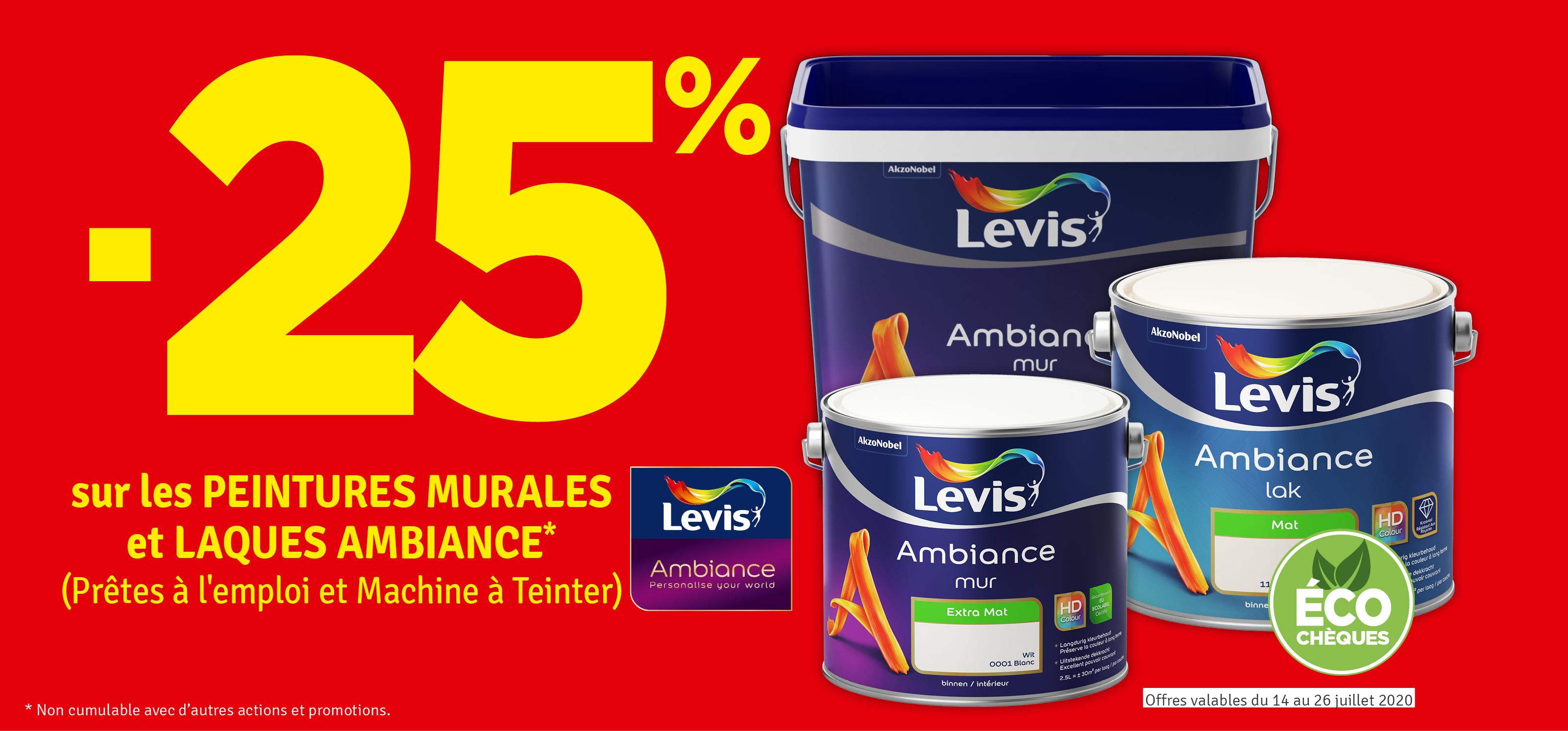 Promo - -25 % sur les peintures murales et laques Ambiance LEVIS