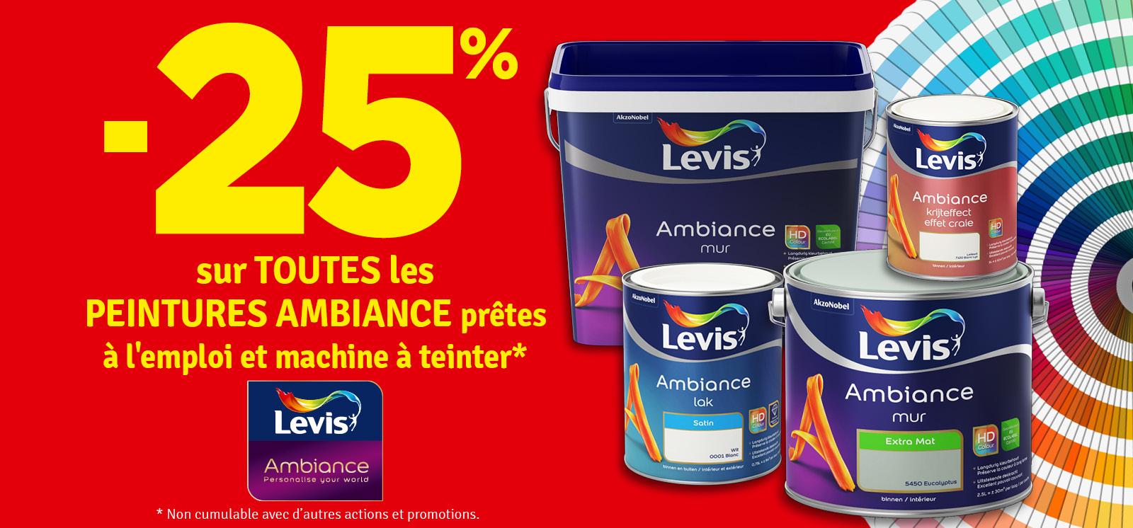 Promo - 25% sur les peintures Levis Ambiance